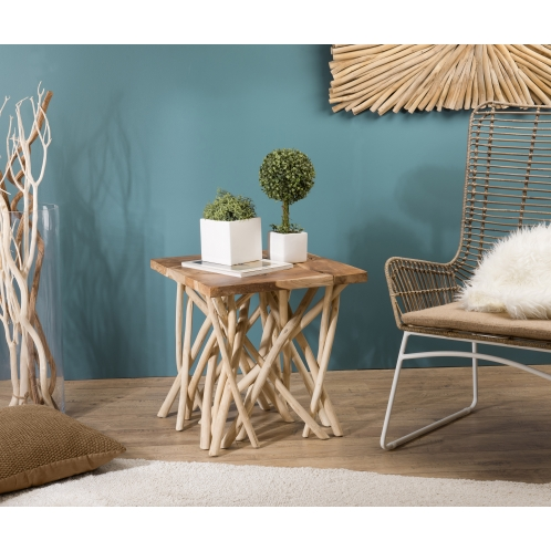 https://www.dpi-import.com/4104-thick_dpi-import/table-d-appoint-nature-plateau-teck-pieds-bois-flotte.jpg
